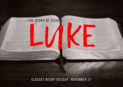 The Story of Jesus by Luke